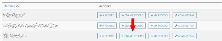 Opciones para añadir registros a un domino